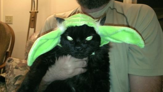 Cricket Yoda